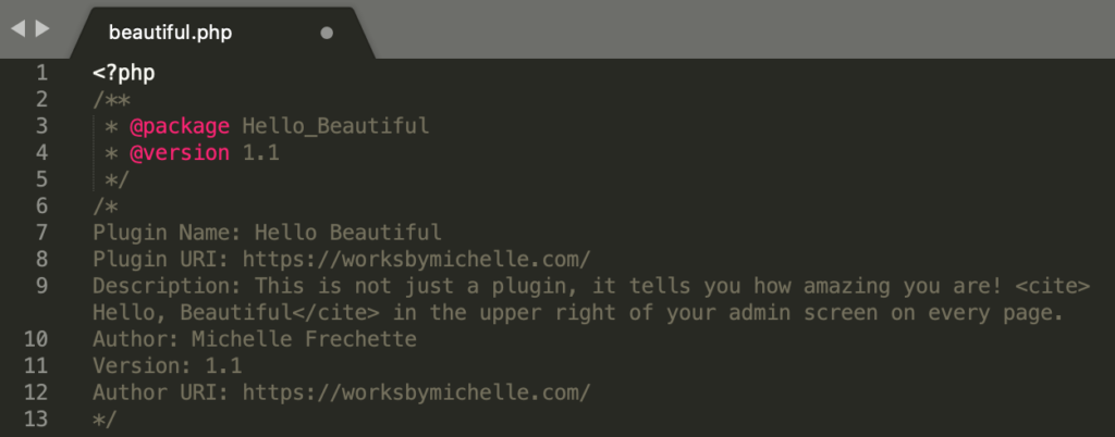 The top of the beautiful.php file shows the package and version number 1.1 of hello beautiful along with the meta information about the plugin.