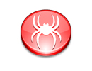 Develop your own spider with cURL